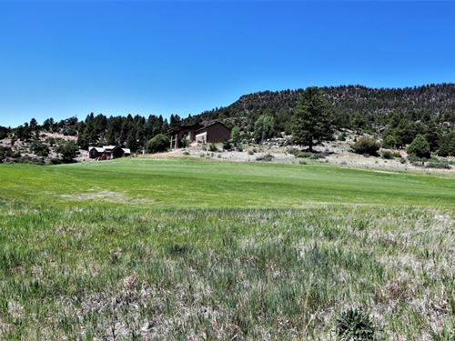 Alder Creek, Lot 20 : South Fork : Rio Grande County : Colorado