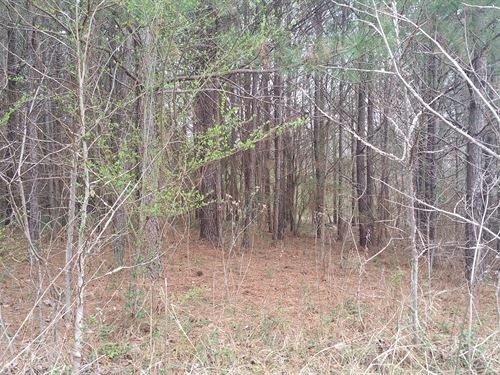 Beautiful Tract With Gorgeous Views : Blountsville : Blount County : Alabama