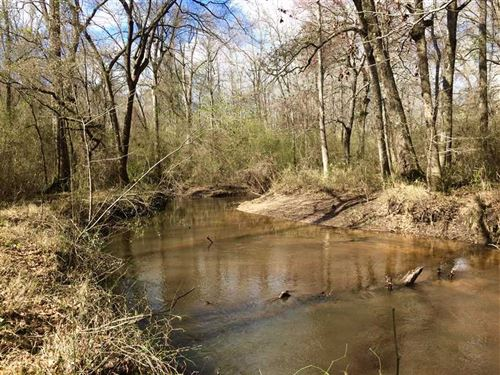 Great Secluded Tract on Big Indian : Perry : Houston County : Georgia