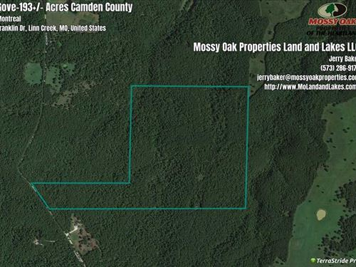 193 Acre Recreational Property : Montreal : Camden County : Missouri