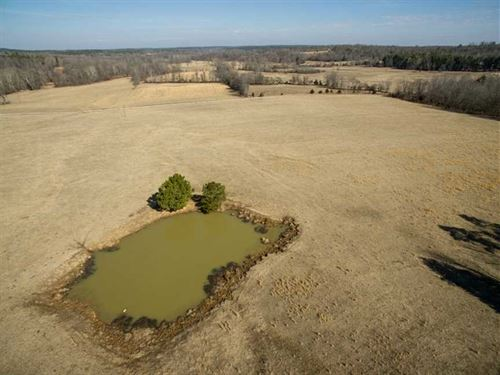 Butler County Cattle Farm For Sale : Ellsinore : Carter County : Missouri