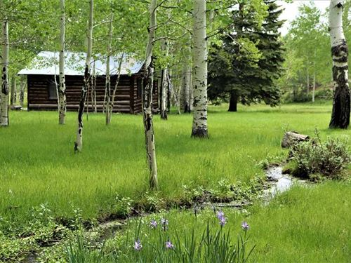 Majestic Elk Ranch : Guffey : Park County : Colorado