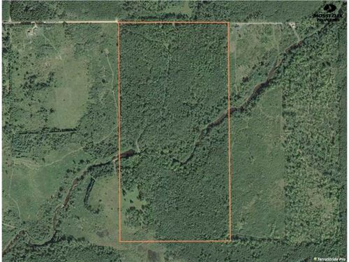 Cabin on 80 Acres of Hunting Land : Mosinee : Marathon County : Wisconsin