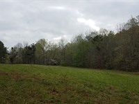 Caldwell Spring 57+/- Acres Clay Co : Cragford : Clay County : Alabama