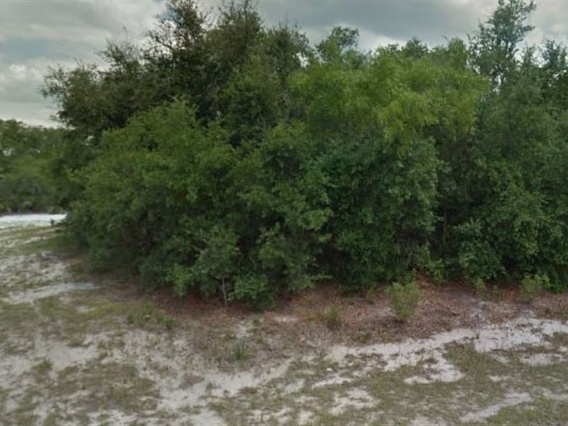Polk County, Fl $7,000 Neg : Poinciana : Polk County : Florida