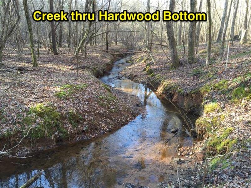 Pines, Hardwoods And Creeks : Shiloh : Harris County : Georgia