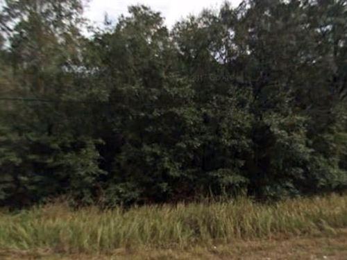 Gilchrist County, Fl $5,500 Neg : Trenton : Gilchrist County : Florida