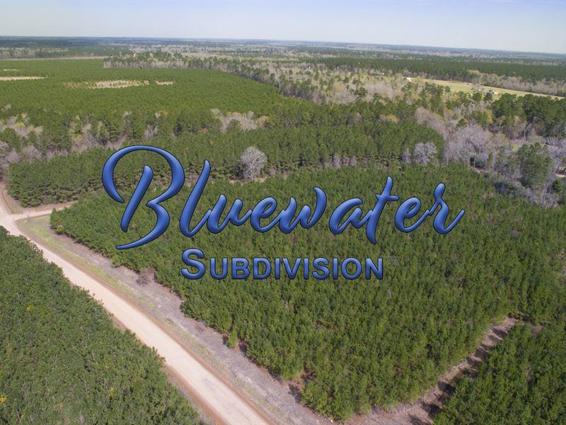 9.34 Ac T 3-3 Bluewater Rd : Schwab City : Polk County : Texas
