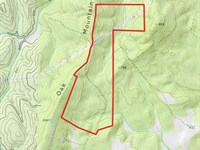 Cheap Land In Talbot County Ga : Woodland : Talbot County : Georgia