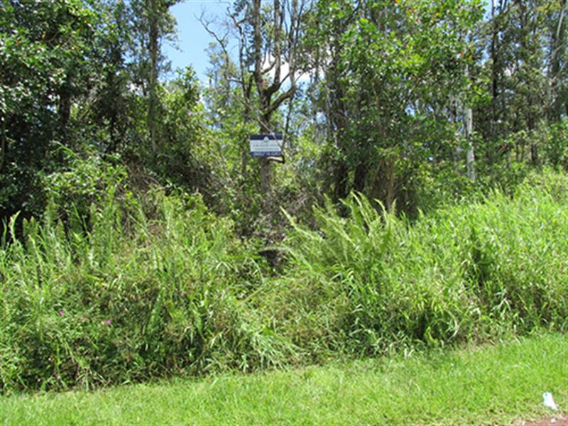 Land For Sale, Owner Financing : Pahoa : Hawaii County : Hawaii