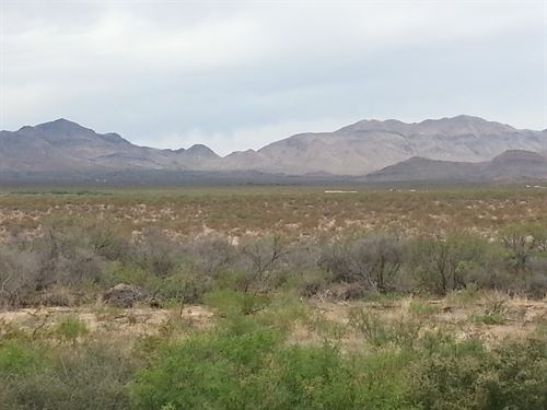 40 Acrs Near Paved Rd $0 Dn $228/Mo : Sierra : Hudspeth County : Texas