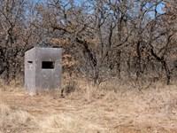 180 Acre Hunting Ranch $0 Down : Sierra Blanca : Hudspeth County : Texas