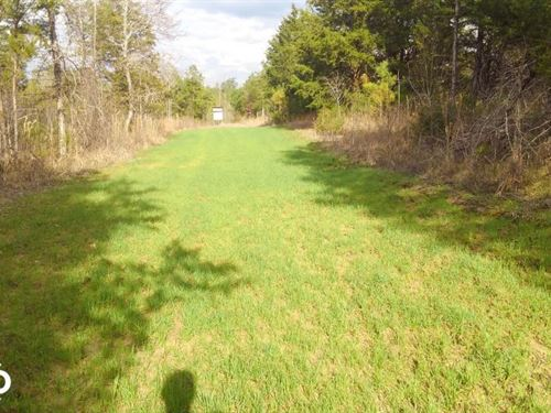 Wheeler Road Hunting And Recreation : Minter : Lowndes County : Alabama