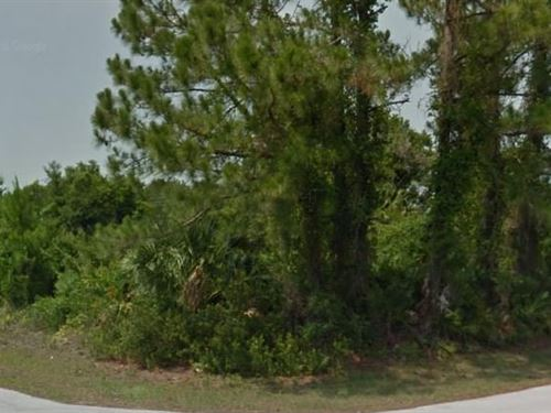 Flagler County, Fl $75,000 Neg : Palm Coast : Flagler County : Florida
