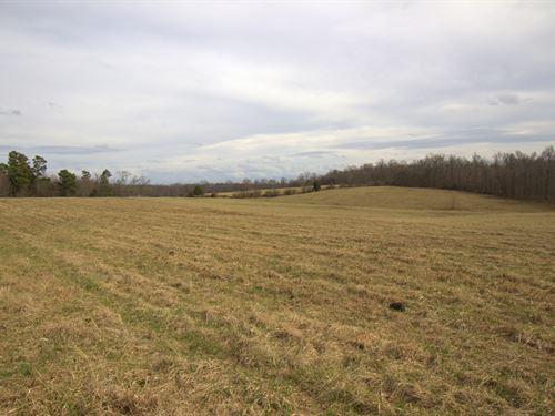 Beautiful 15 Acre Building Site : Bon Aqua : Hickman County : Tennessee