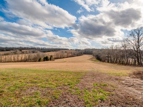 20 Acre Building Site On Bryd Creek : Centerville : Hickman County : Tennessee