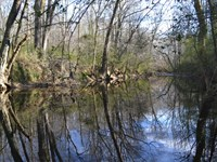 Chatham 122 : Pittsboro : Chatham County : North Carolina