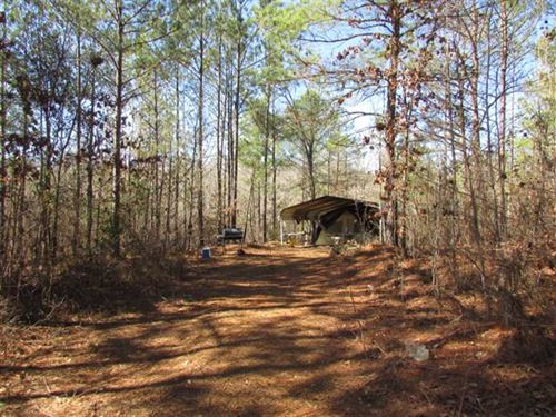 60 Acre Hunting Tract on Cotton : Coleman : Randolph County : Georgia