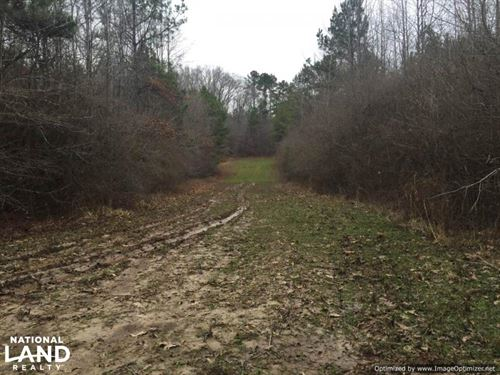 Perfect Home OR Cabin Site : Lexington : Holmes County : Mississippi