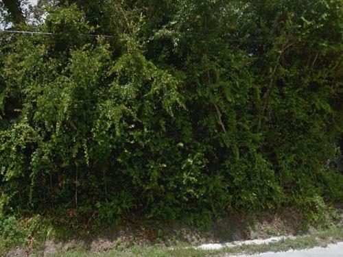 Volusia County, Fl $30,000 Neg : Orange City : Volusia County : Florida