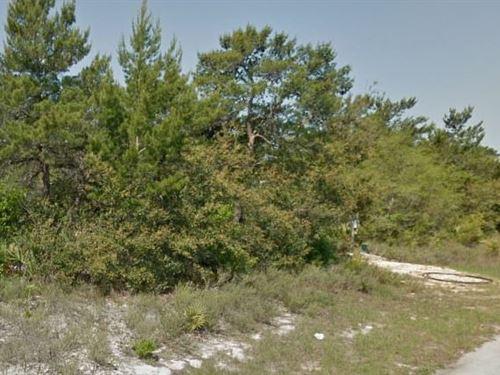 Bay County, Fl $52,000 Neg : Panama City : Bay County : Florida