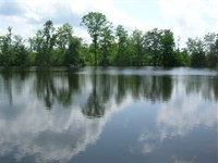 Private Country Living Gretna, Va : Gretna : Pittsylvania County : Virginia