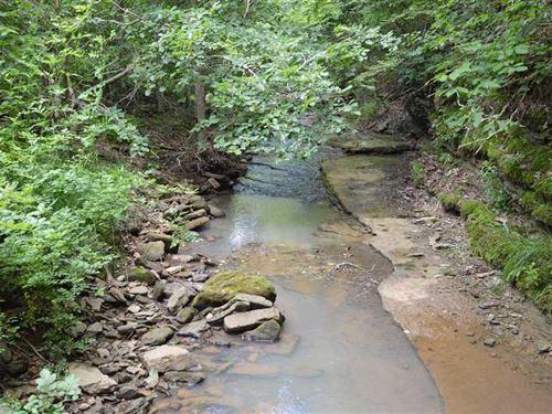 Venus Mountain Ranch : Huntsville : Madison County : Arkansas