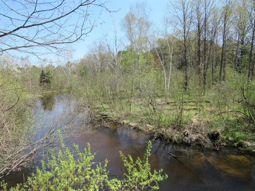 Little Manistee River Acreage : Irons : Lake County : Michigan