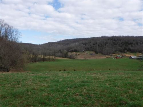 49Ac All Open Level/Rolling Pasture : Sparta : White County : Tennessee