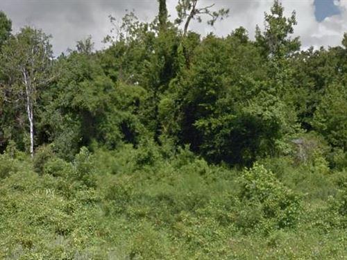 Saint Johns County, Fl $700,000 Neg : Saint Augustine : Saint Johns County : Florida