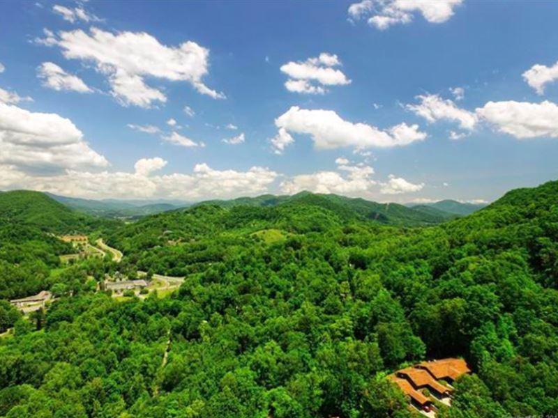Name Your Price On 15 Mt Lots : Waynesville : Haywood County : North Carolina
