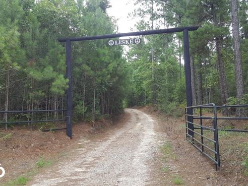 73 Acre Homesite/Recreational/Hunti : Livingston : Polk County : Texas