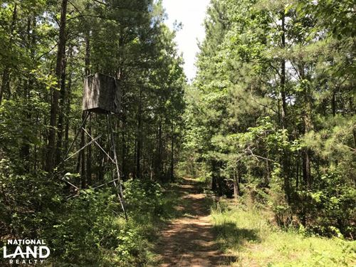 McCormick Timber And Hunting Land : Mount Carmel : McCormick County : South Carolina