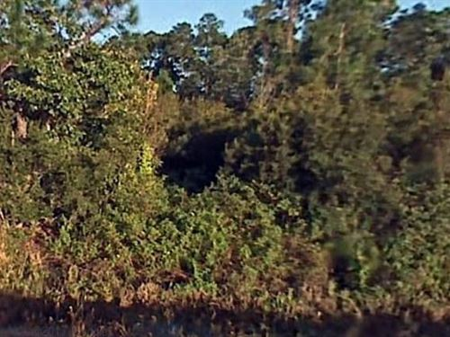 Polk County, Fl $10,000 Neg : Lake Wales : Polk County : Florida