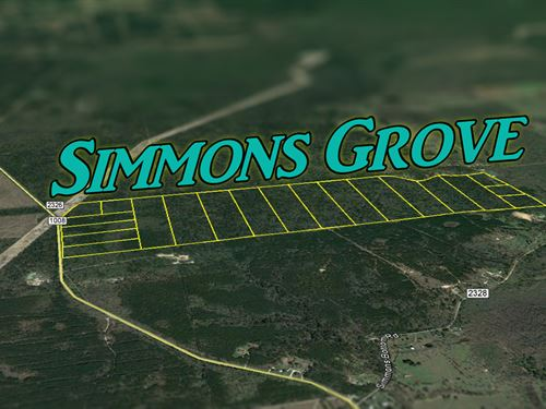 38.689 Ac Simmons Grove Tr 8 : Dayton : Liberty County : Texas