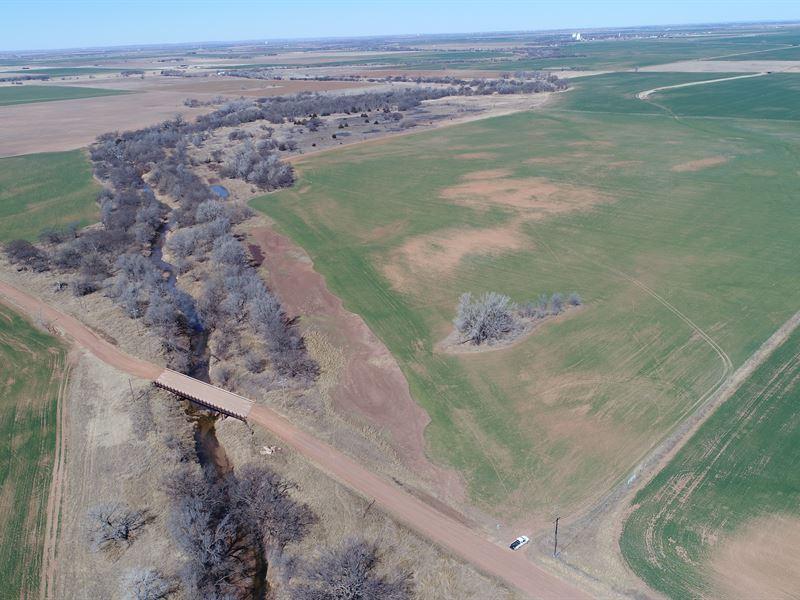 Hunting, Cropland, Grass Pasture : Carmen : Alfalfa County : Oklahoma