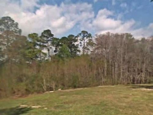 Gulf County, Fl $13,000 Neg : Wewahitchka : Gulf County : Florida