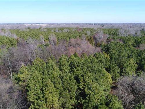 Recreation Property : Avery : Lamar County : Texas