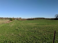 27+/- Acres Pastureland : Wadley : Clay County : Alabama