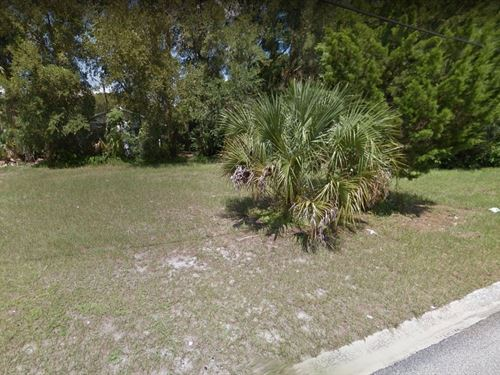 .23 Acres In Deland, FL : Deland : Volusia County : Florida