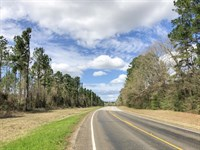 11.17 Acres Kittrell Acres Tract 2 : Trinity : Walker County : Texas