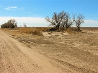 Kansas Farmland Auction : Garden City : Finney County : Kansas