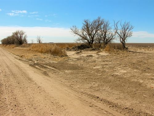 Kansas Farmland Auction : Garden City : Finney County : Kansas