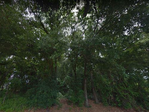 .19 Acres In Apopka, FL : Apopka : Orange County : Florida