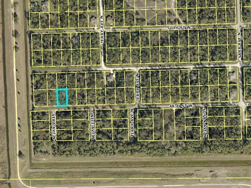.25 Acres In Lehigh Acres, FL : Lehigh Acres : Lee County : Florida
