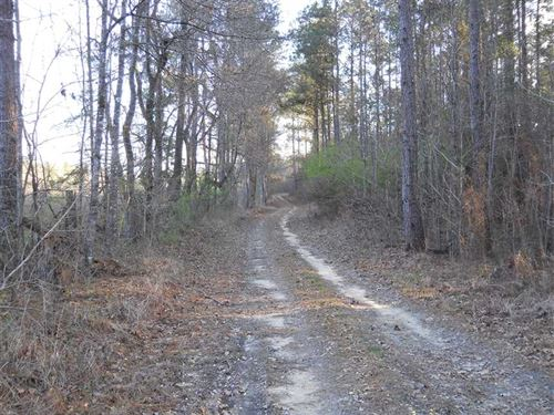 51.02 Acre Timberland And Recreati : Crosby : Amite County : Mississippi