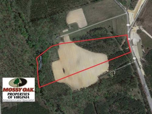 Reduced, 24 Acres of Creek Front : Emporia : Greensville County : Virginia