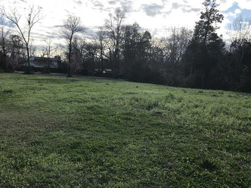 Two Lots Totaling One Acre at Rive : Demopolis : Marengo County : Alabama