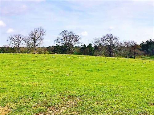 26 Acres Of Prime Development Land : Purvis : Lamar County : Mississippi