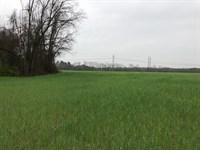 Gorgeous Secluded Farm Shannon : Shannon : Hoke County : North Carolina